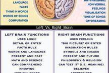 Brain(y) / by Kruidendoc .