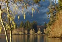 Washington & Oregon State Treasures