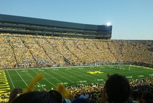 Football / University of Michigan--Go Blue! and Detroit Lions are my go-to teams!