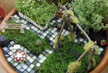 Garden + Outdoor / my ever-growing ideas for our outdoor spaces (which are forever in need of maintenance!) / by Amanda C