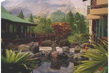 quadres cases, balcons, finestres / per a fer quadres de paisatges on surten cases, balcons, finestres, plantes.