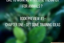 Animal Care Business Development / Tips and information on how to develop a business as an animal care professional - including as a holistic therapist (e.g. veterinary physiotherapist, etc)