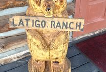 From our Guests / Photos from the great guests of Latigo Ranch.