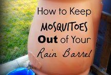 Rain Barrelso