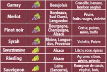Vins / Alcools