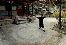 Bagua / Martial art