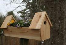Plantenbak/Vogelhuis