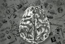 Om undervisning / Artikler mv. om undervisning