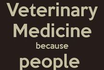 vets they say