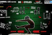 Training: Leg