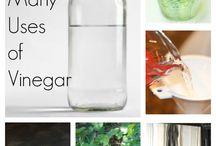 100 + uses for Vinegar / by Keri Danielle