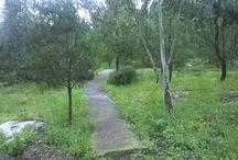 walking around Galaxidi / for those who love walking...