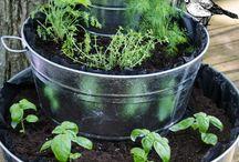 Gardening <3