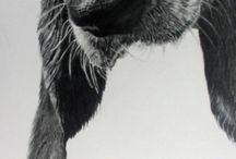 Zwierzaczki♥