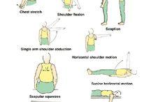 Shoulder instability scapular,multidirectional rehab.exercize