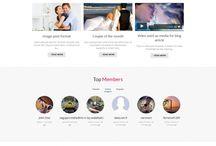 WordPress Themes / The best WordPress theme collections.