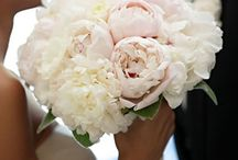 The Day / Wedding ideas