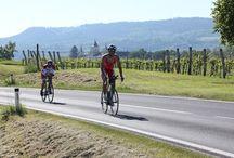 Ironman_SanktPölten_2016 / Ironman St. Pölten 2016, Radfahren, Pos. Krems-Thallern