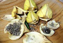 bronchitis treatment at home, natural treatment, graviola, soursop, flower