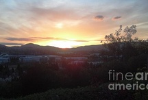 San Ramon, CA / Sharing pictures I have taken in the Tri-Valley.  Most are of my beloved adult home town San Ramon, CA