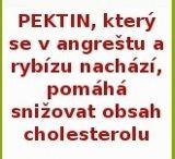 Planflife.cz