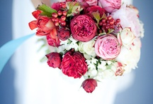 Bright, Colorful Wedding