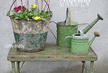 Watering Cans / by Melinda Willis-Dishman