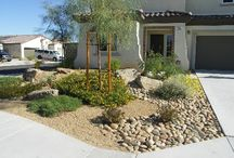 Landscaping Ideas / by Cindy Moats