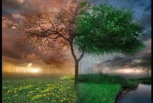 ScenerySeasonBeautiful / Seasons, Scenery, Places To Go
