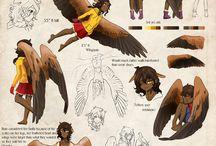 tipos de alas