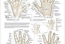 Acupunctura coreana