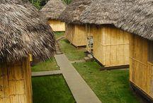 Amazon Rainforest Coca Lodges