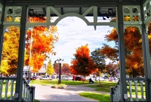 Hammondsport, New York / Set on the southern tip of Keuka lake, home to award winning wineries, breweries, museums, boutique shopping, and great restaurants, Hammondsport was officially named America's Coolest Small Town, by readers of Budget Travel magazine in 2012!