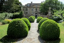 Tintinhull Gardens, Somerset