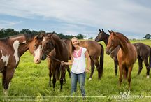 Equestrian Portraits (Senior & Family) / by Aaron Watson Photography