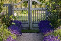 Gardens: Gates & Walls & Fences / by Janet Mcardle