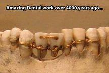 history - dentist