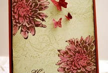 Blooming with Kindness Stampin up