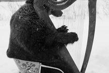 musikaliska djur