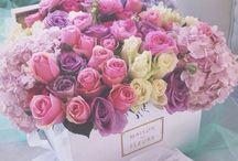 flowers •