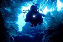 Scuba Diving / by Cheol Hoon Chung