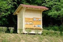 Slovenian Beekeeping