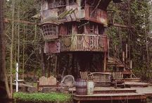 Tree Houses ❤️