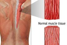 Muscle n joint pain