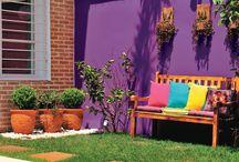 terrazas y plantas