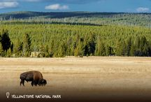 National Parks & Monuments / Info about visiting these magnificent parks