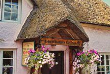 british tea rooms