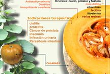PLANTAS-MEDICINALES-Y-AROMATICAS / SALUD PLANTAS MEDICINALES-AROMATICAS