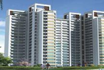 Ireo new launch in Gurgaon   Tata new launch in gurgaon