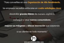 QUOTES / About HPO, leadership and management